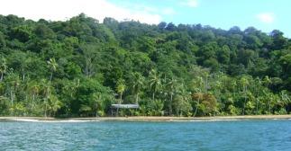 Bahiasolanomadera