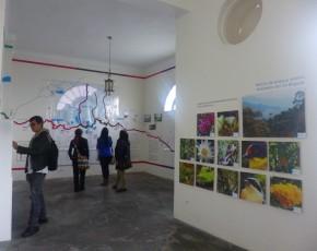 Exposición río Bogotá en Casa Museo